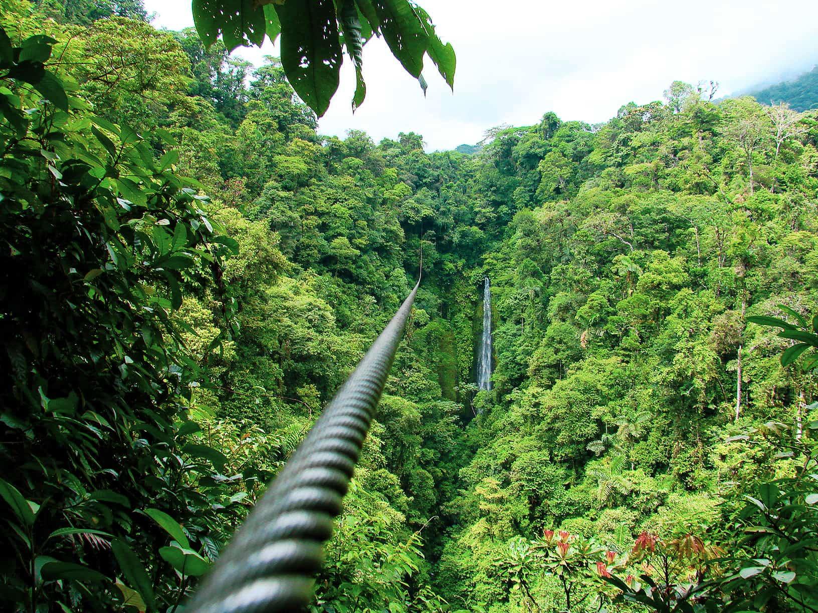Ziplining in den Nebelwäldern von Monteverde, Costa Rica