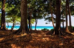 Ein wunderbarer Ort für eine Abkühlung: Havelock Island in Indien