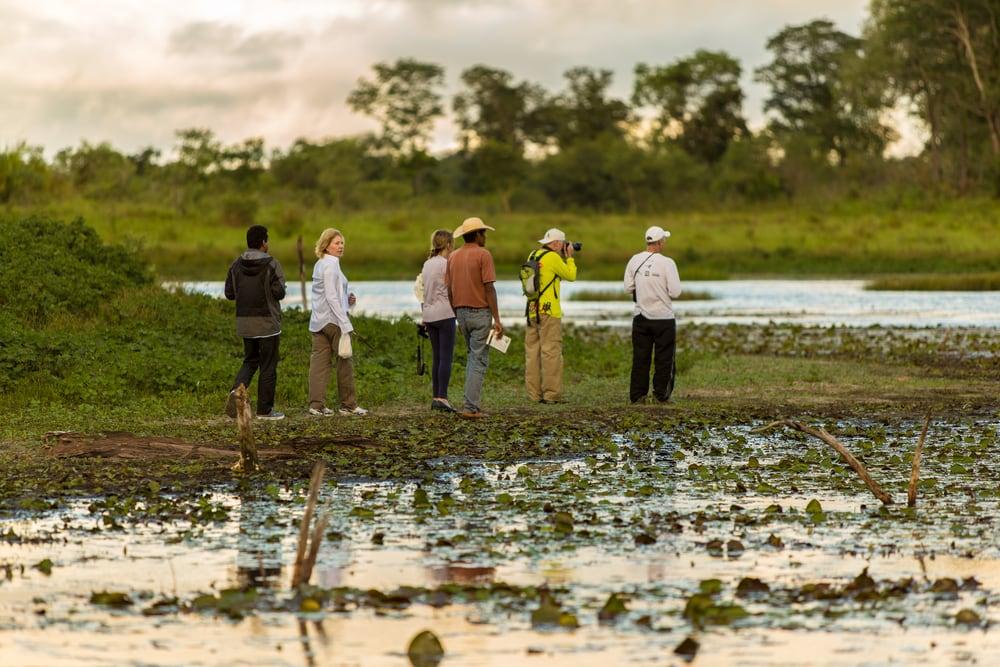 Ökotourismus in Brasilien: Besucher im Pantanal