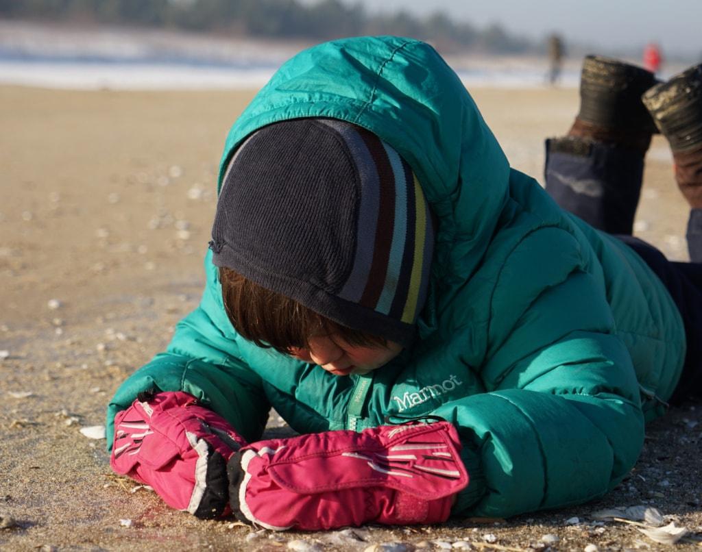 Bernstein sammeln am Strand von Sobieszewo nahe danzig