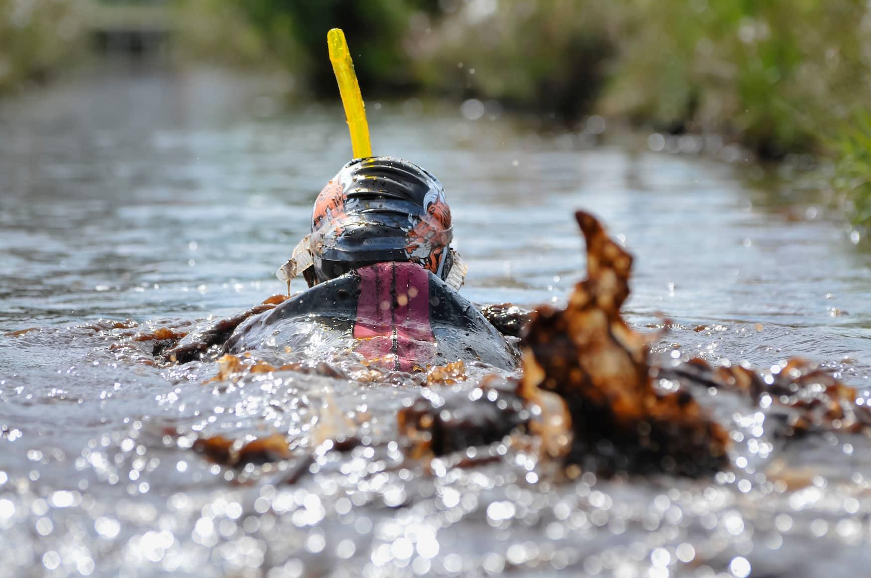Bog Snorkeling Weltmeisterschaft in Wales