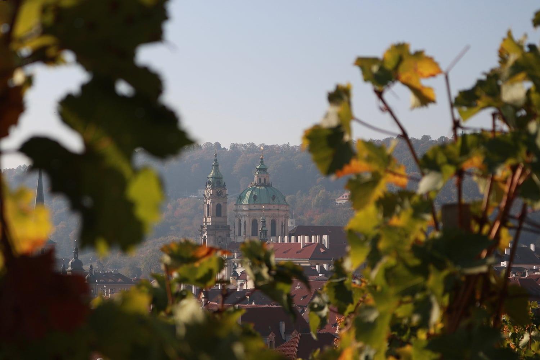 Die Spitzen der Prager Burg ragen aus Baumkrone hervor