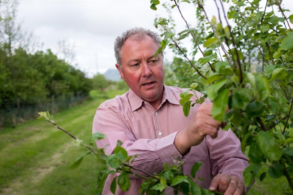 Richard Huws auf seinem Weingut in Wales