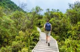 Wanderung am Mount Taranaki