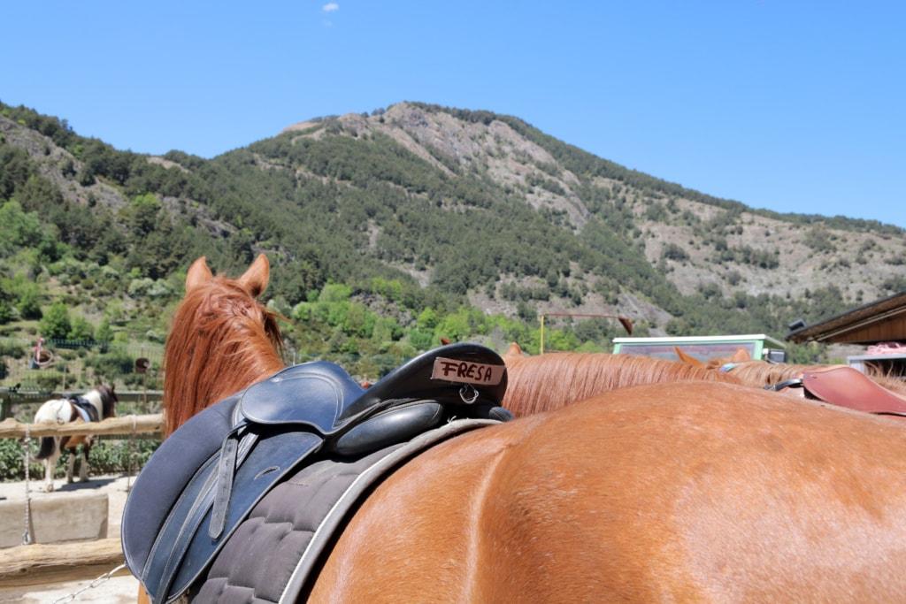 Pferd in Andorra