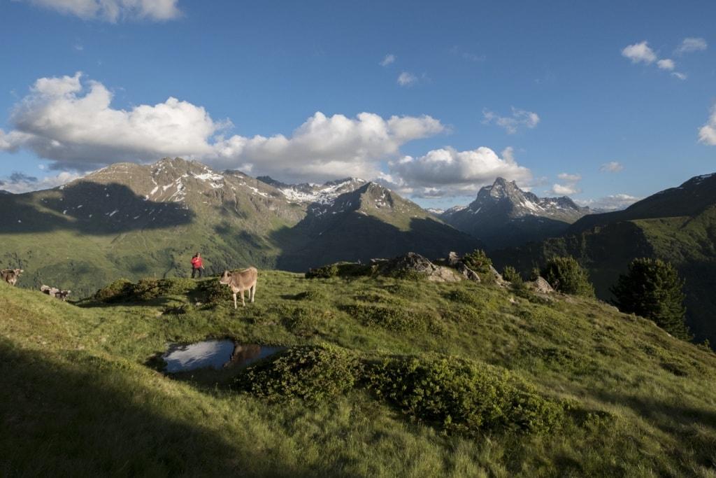 Wanderszene Berggeistweg am Wirt mit Blick auf den Patteriol, Verwallgruppe, Tirol, Oesterreich.