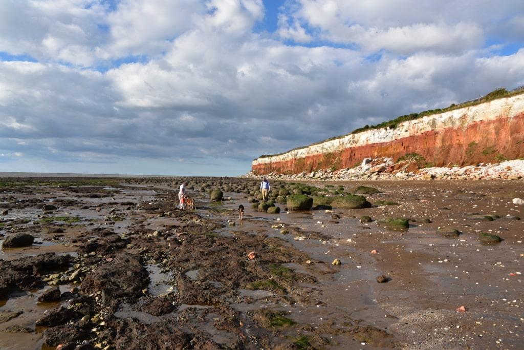 Küste und Strand in Norfolk
