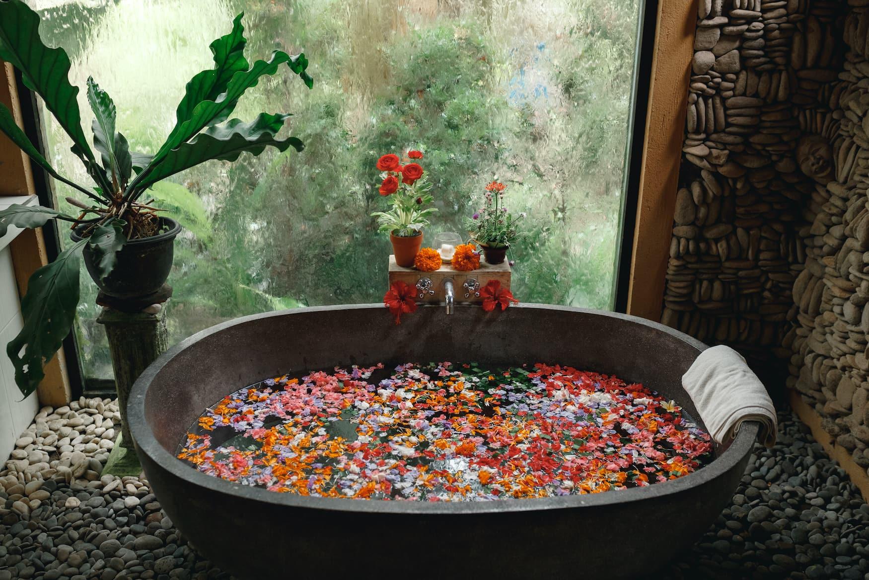 Rote Blüten schwimmen auf Wasseroberfläche einer Badewanne