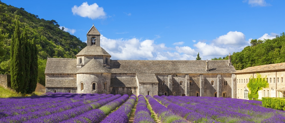 Zisterzienser-Abtei Senanque in Gordes Frankreich