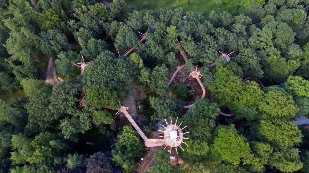 Baumkronenpfad Ivenacker Eichen Luftaufnahme