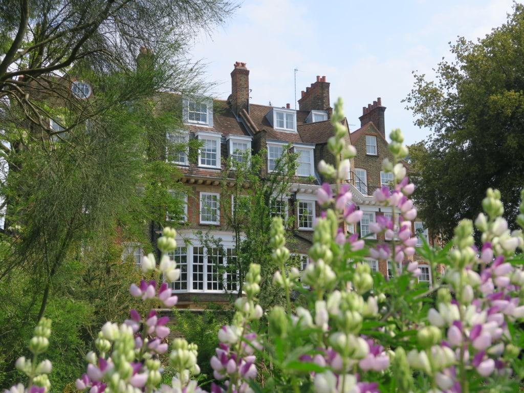 Chelsea Physic Garden in London