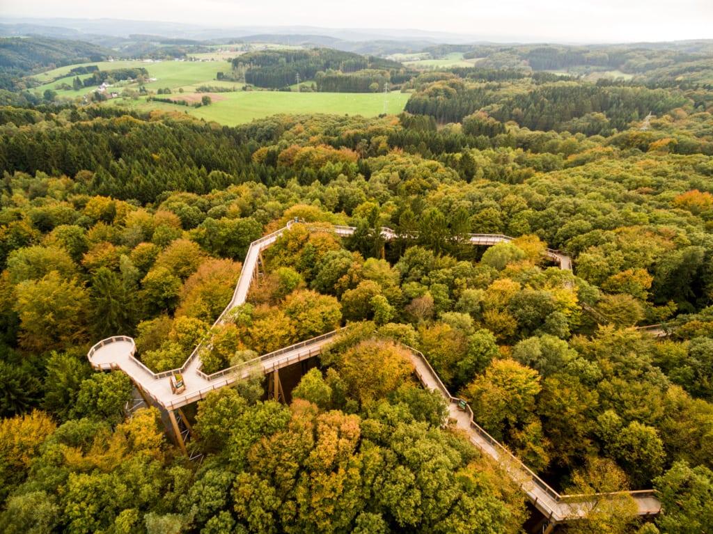Blick auf den Baumwipfelpfad Panarbora in Waldbröl