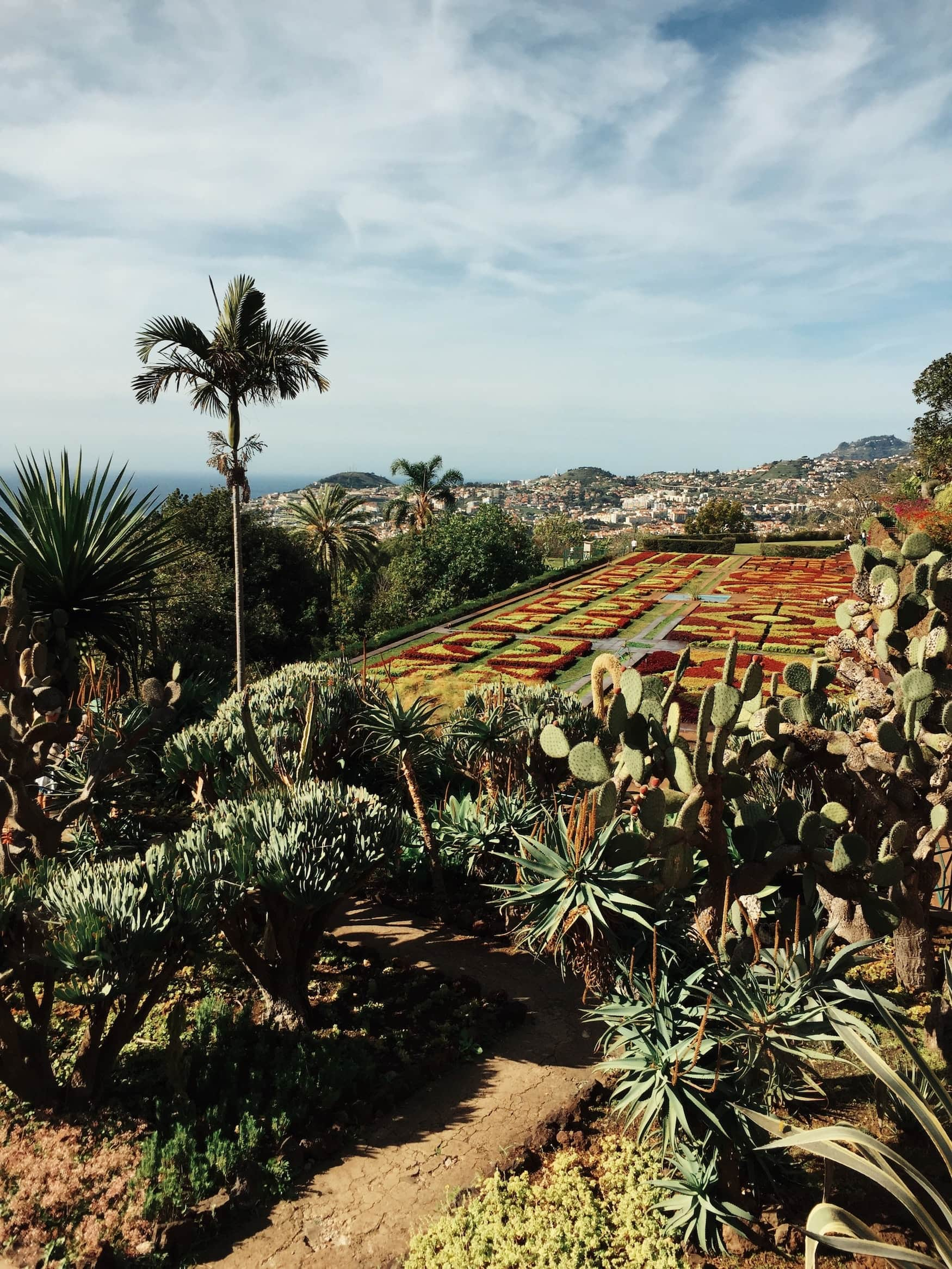 Blick über einen schönen Garten nach Funchal auf Madeira