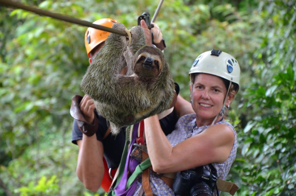 Faultier auf der Osa-Halbinsel in Costa Rica