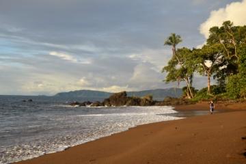 Strand auf der Osa-Halbinsel in Costa Rica