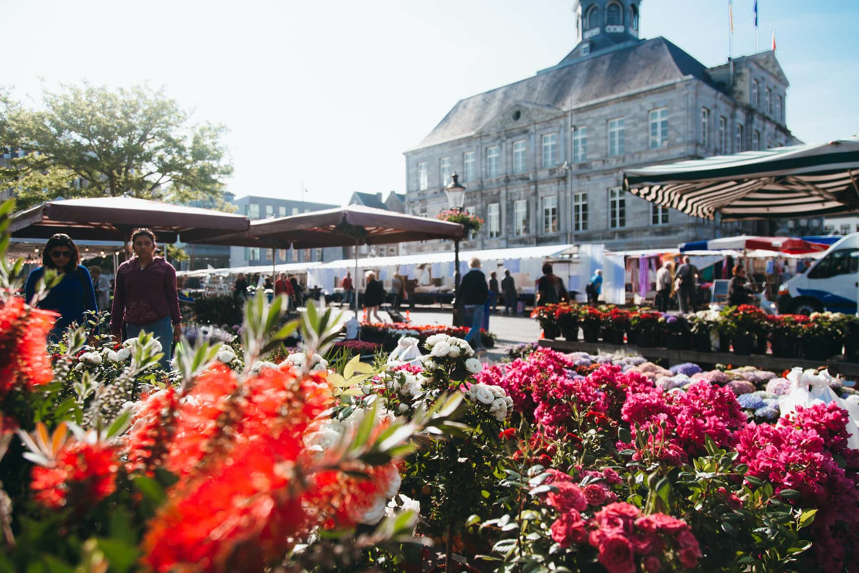 Blumen vor dem Stadthaus auf dem Marktplatz in Maastricht