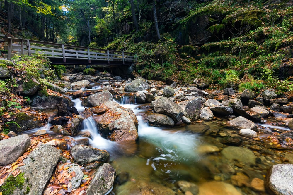 Franconia-Wasserfälle in New Hampshire