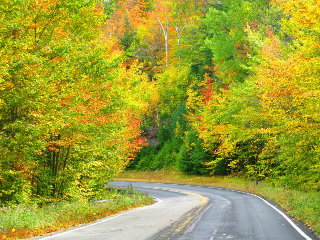 Straße auf dem Kancamagus Highway in New Hampshire
