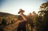 Mann im Weingut