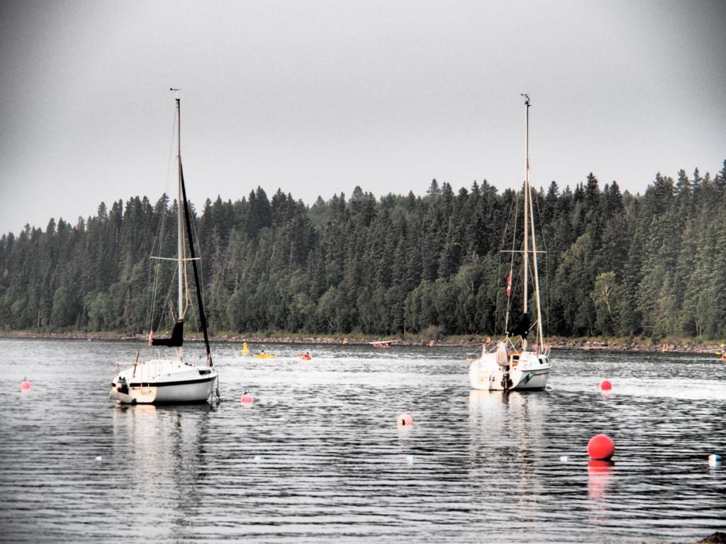 Den Clear Lake kann man per Kanu, Ausflugsboot, Tretboot oder mit dem Segelboot erkunden.