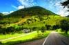 Straße durch den Schwarzwald