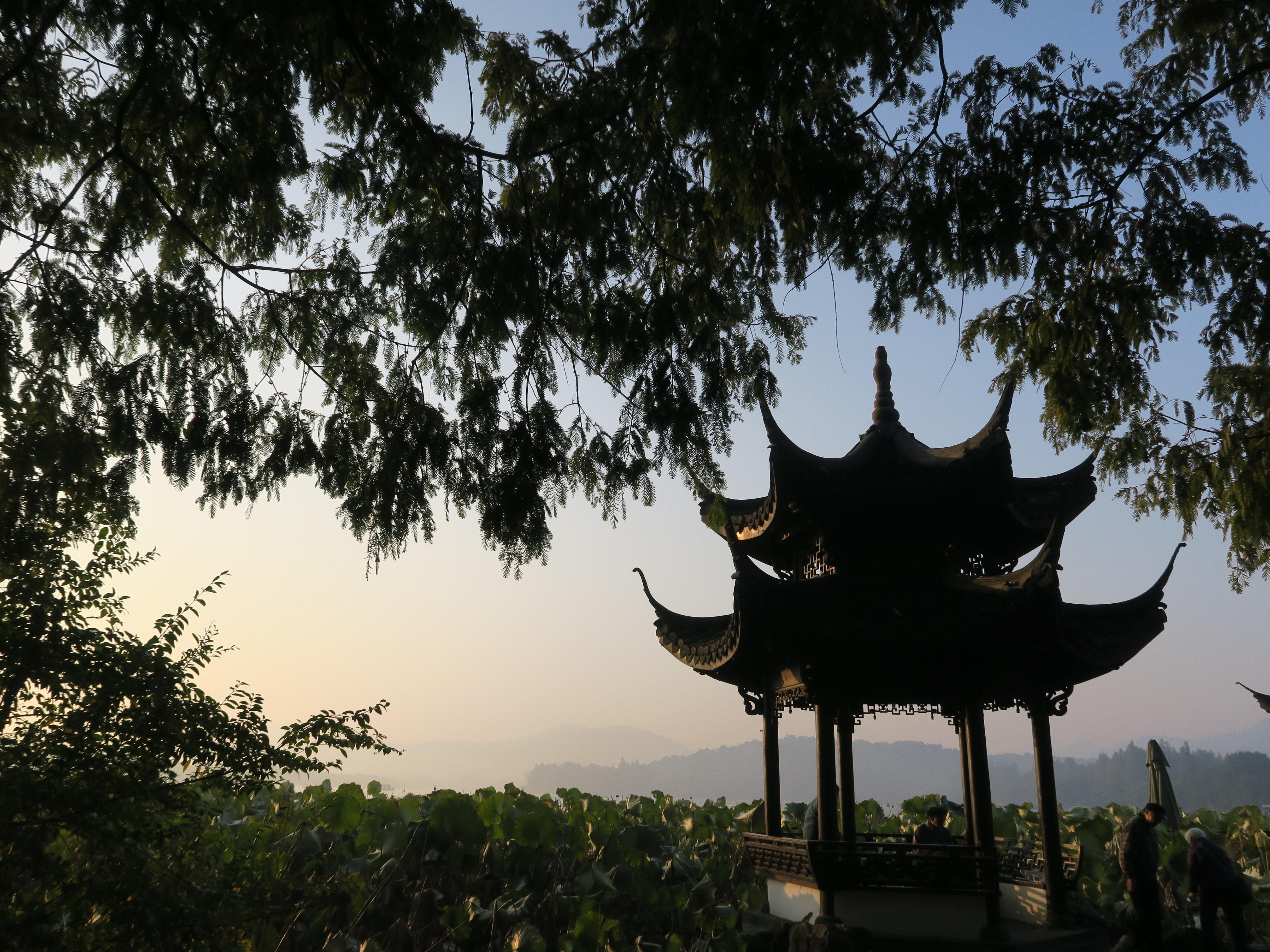 Pavillion bei Sonnenaufgang zwischen Bäumen