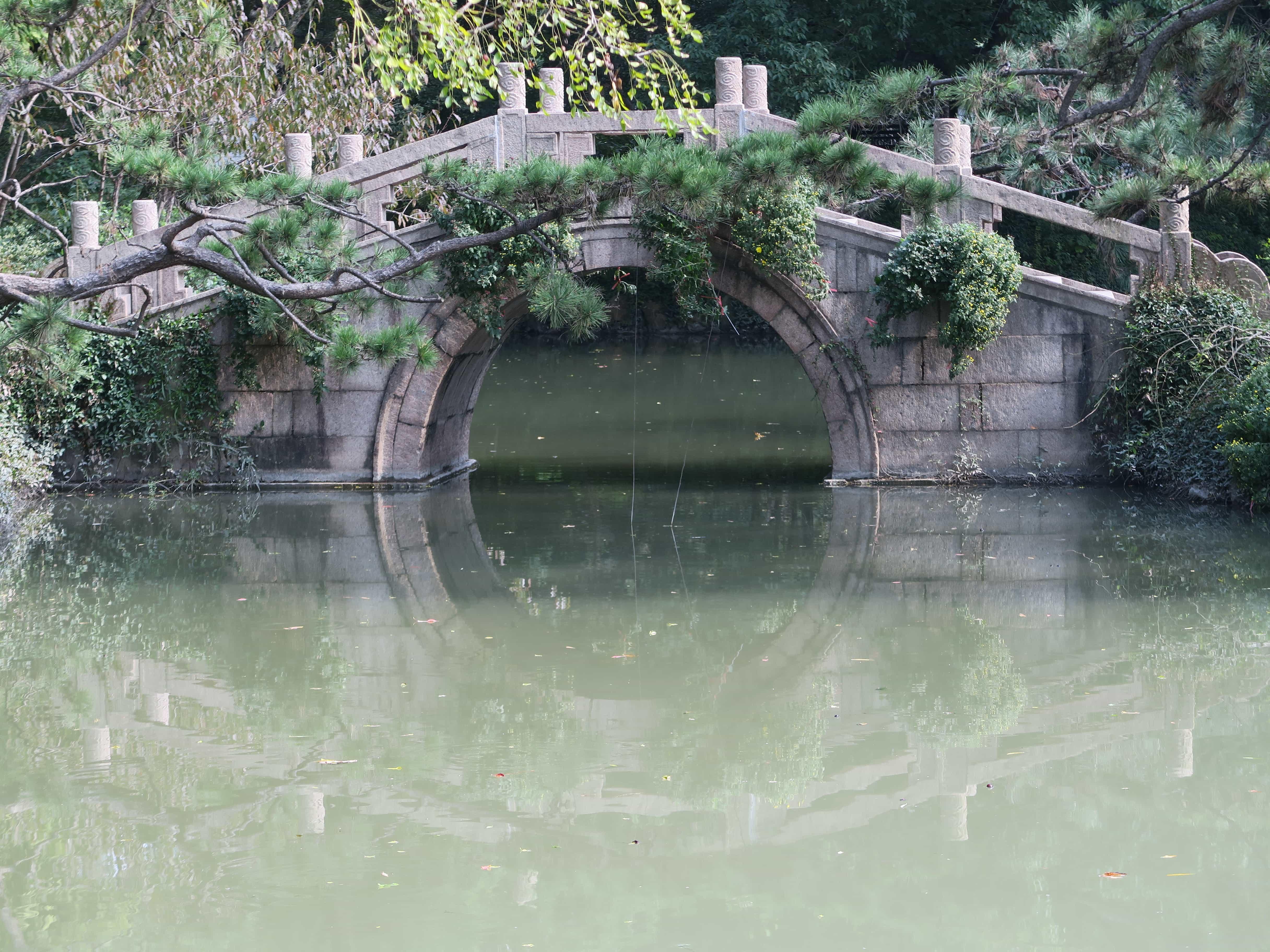 mysthischer grüner See mit kleiner Brücke und Kletterpflanzen