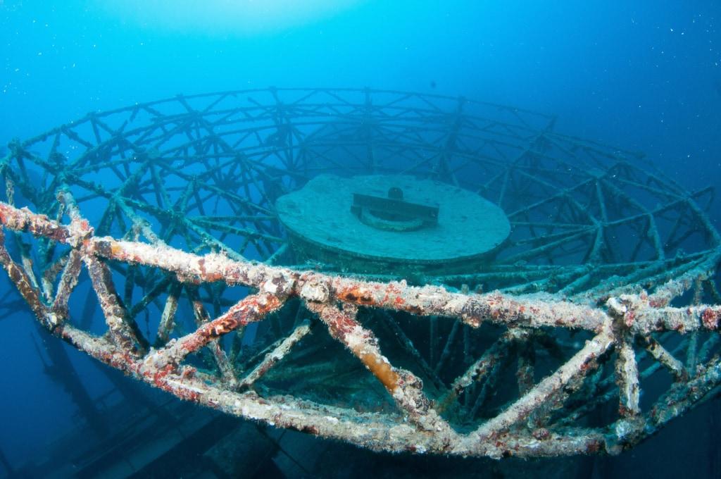 Vor der Küste Floridas wurde absichtlich ein Boot versenkt, um so ein künstliches Riff zu schaffen – mit Erfolg!