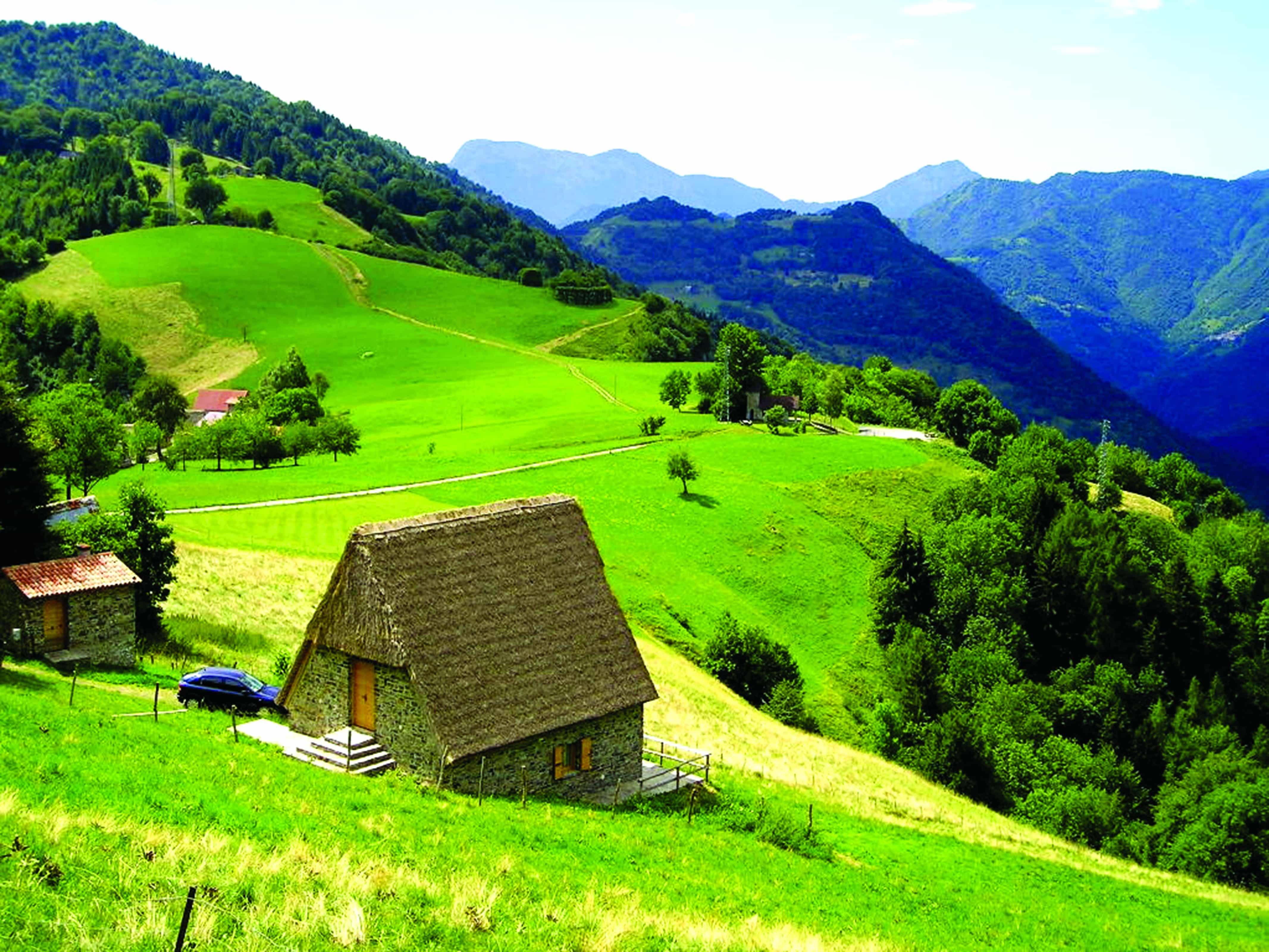 Sattgrüne Almlandschaft mit Bergpanorama