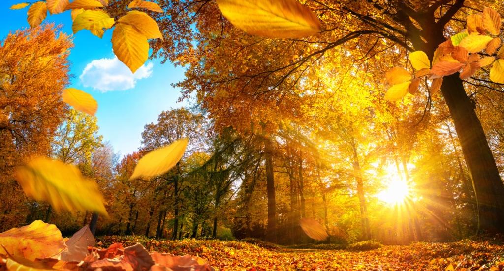 Im Herbst locken tolle Wanderwege in Europa an die frische Luft.