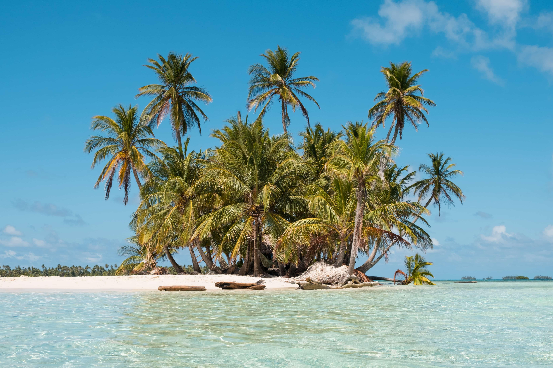 Kleine Sandinsel mit Palmen und angeschwemmten Baumstämmen