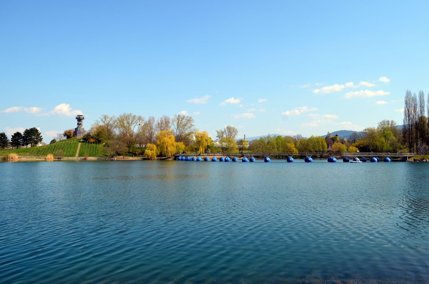Blick auf den Seepark in Freiburg