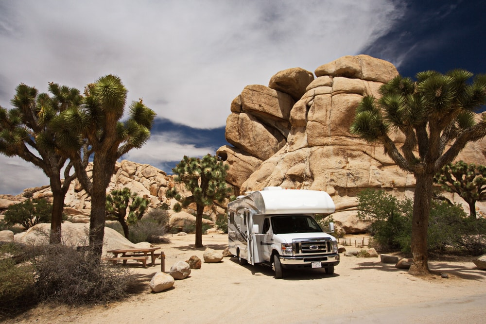 Camping im Joshua Tree National Park