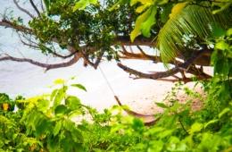 Hängematte an tropischem Sandstrand