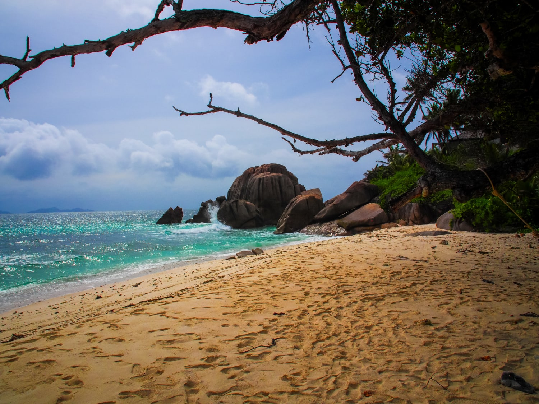 Einsamer tropischer Strand