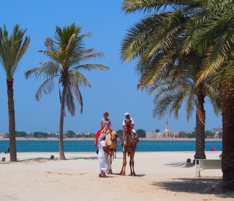 Zwei Kamele in weißem Sand am Strand mit Palmen