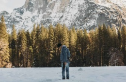 Schneelandschaften im Yosemite Park