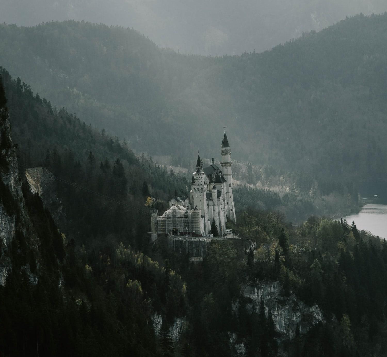Schloss Neuschwanstein umgeben von dunklen Tannen und grauem Himmel.