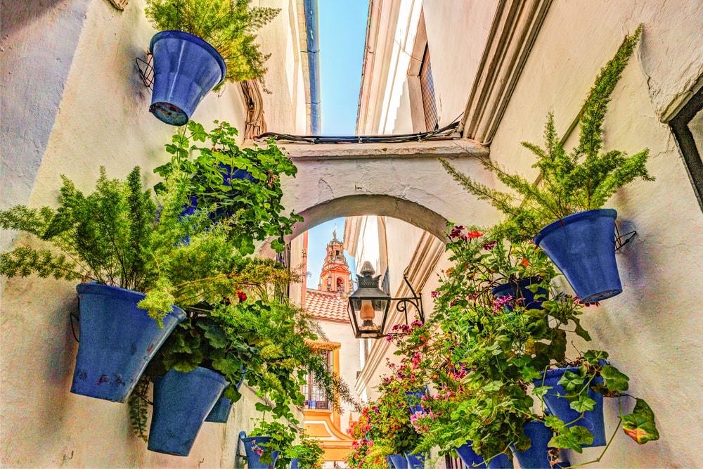 Alte schmale Gasse mit blauen Blumentöpfen und Bogen