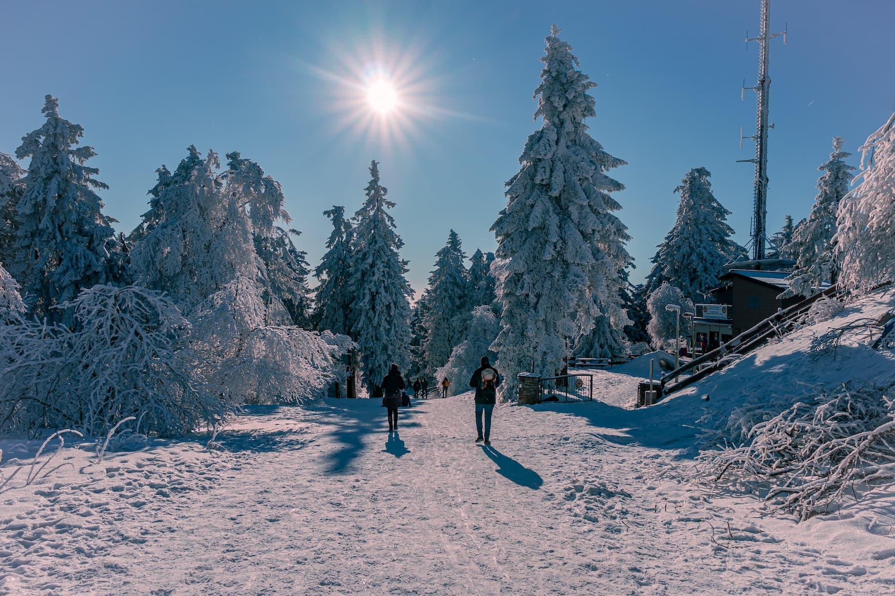 Verschneite Landschaften auf dem Großen Feldberg
