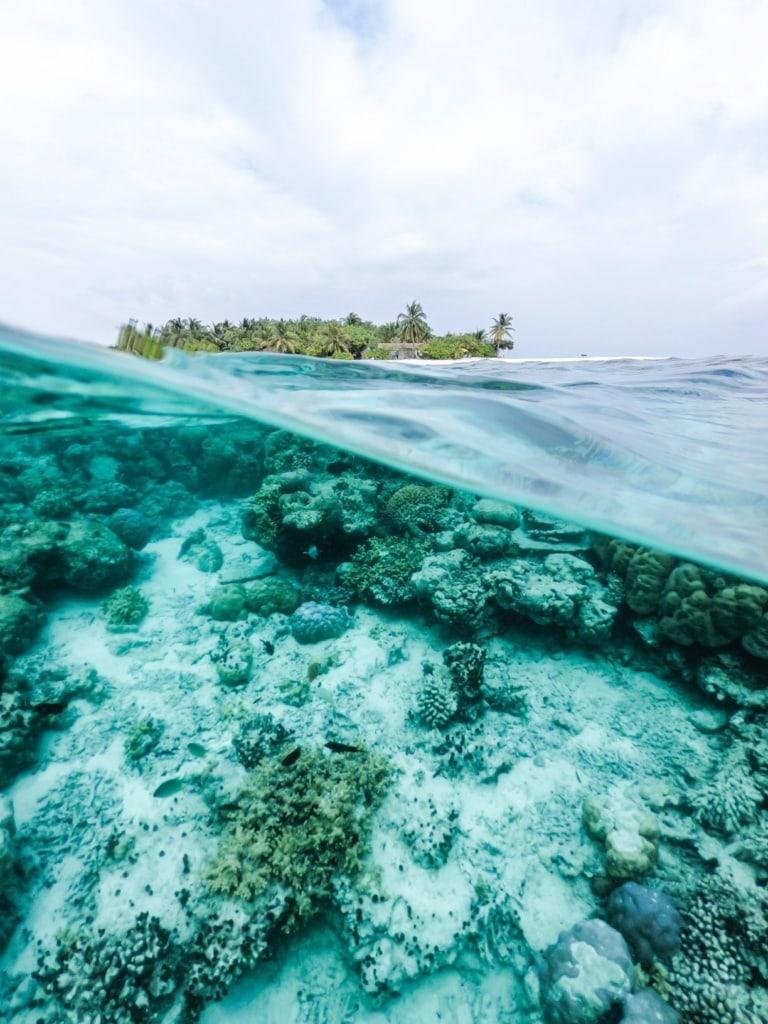 Foto mit Unterwasserperspektive, im Hintergrund Insel