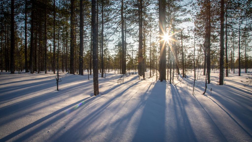 Einsam war es im Norden Russlands, doch in keinem Fall langweilig, erzählt unsere Redakteurin.