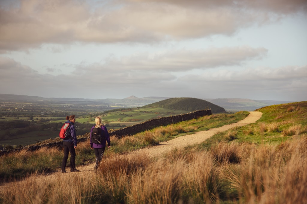 Durch Moos und Moore führt der Cleveland Way der »»England's Great Walking Trails«.