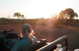 Im Hintergrund sieht man Zebras grasen, im Vordergrund die Rückseite von Guide Kerry-Lee