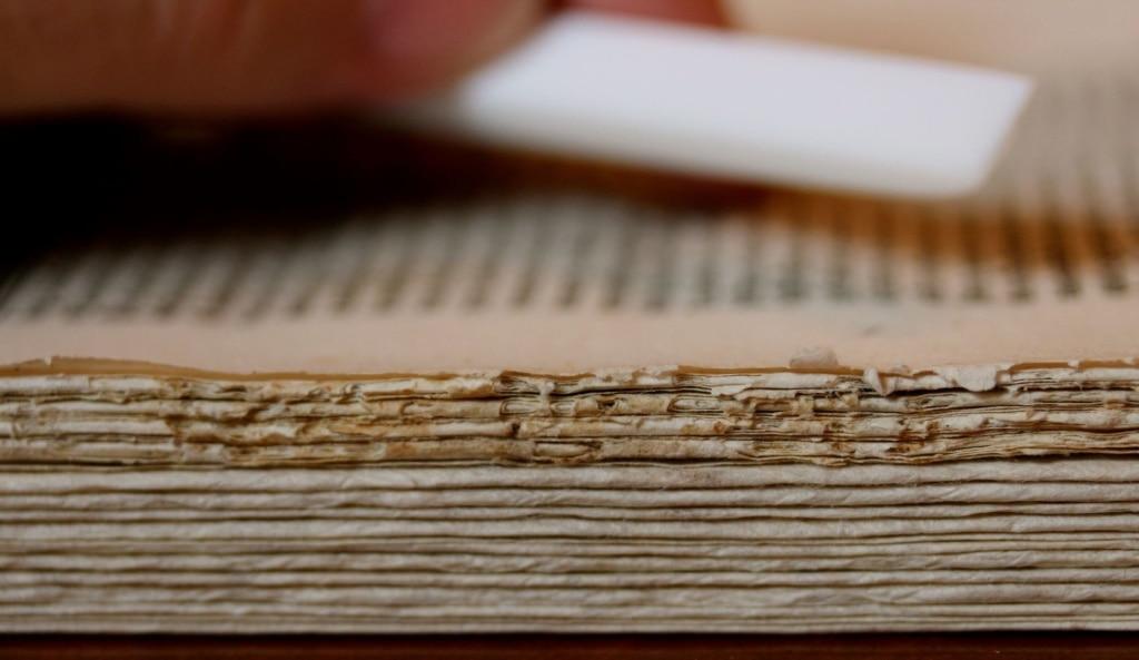 Altes Buch von Leonardo da Vinci