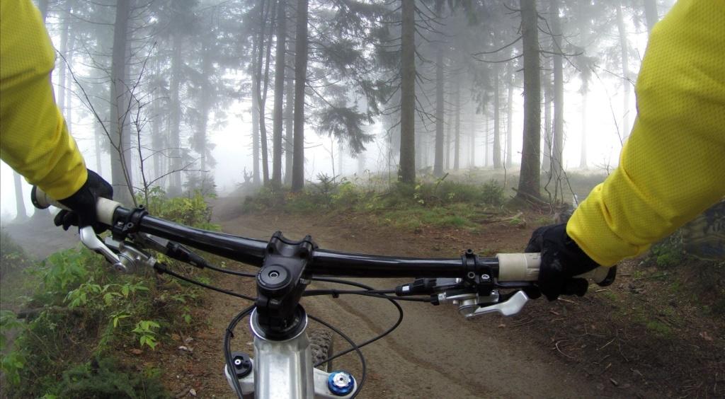 Person hält Lenkrad eines Mountainbikes im Wald