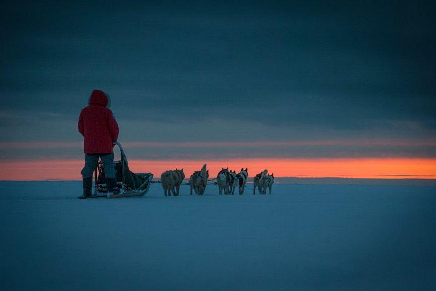 Tagelang durch eisige Kälte gleiten, das erwartet einen bei einer mehrtägigen Huskytour.