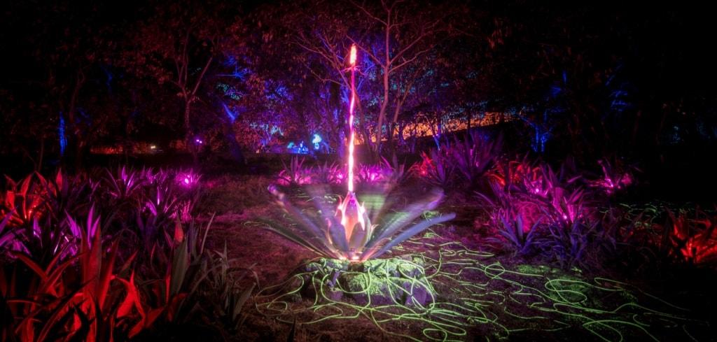 Photosynthese nennt sich diese Kunstinstallation beim Porlwi Festival auf Mauritius.