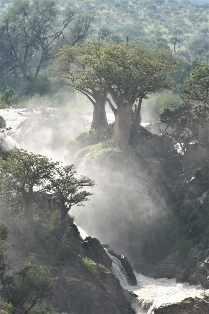 Die Epupa Falls krachen zwischen Namibia und Angola in die Tiefe.