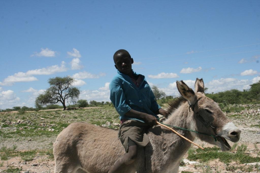 Nicht selten begegnet man in Namibia Menschen auf Eseln.